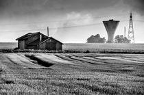 Land(wirt)schaft von Katrin Raabe