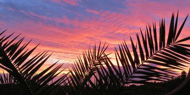 Sundown-in-paradise