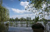 Schweriner See von Michael Winter