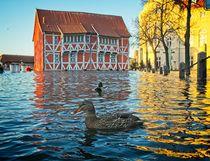 Hochwasser in Wismar von Michael Winter