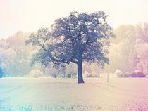 Baum - Tree - minimalistisch von vogtart