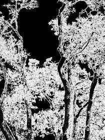 Tree black and with von vogtart