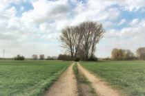 Wanderpfad in der Leineaue von garrulus-glandarius