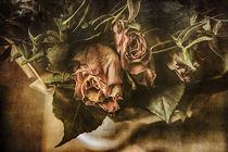 Rosen im Vintagelook by Petra Dreiling-Schewe