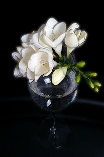 white freesia in a glass von feiermar