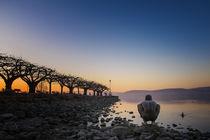 Morgendämmerung an der Radolfzeller Mole - Bodensee von Christine Horn