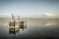 Fischreusen bei Iznang - Halbinsel Höri - Bodensee von Christine Horn