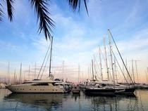 Abends am beliebten Hafen von Palma de Mallorca by wirmallorca