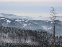 Schwarzwald im Winter von Klaus Meyer