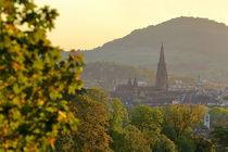 Freiburg im goldenen Herbst von Patrick Lohmüller