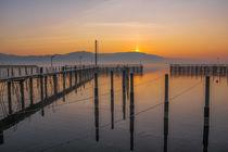 Steganlage Jachthafen Bodman bei Sonnenaufgang - Bodensee von Christine Horn