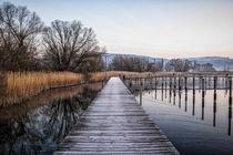 Steganlage Jachthafen Bodman an einem Wintermorgen - Bodensee by Christine Horn