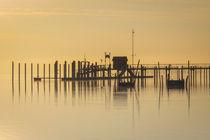 Schiffsanlegestelle Iznang auf der Halbinsel Höri im Morgenlicht - Bodensee by Christine Horn