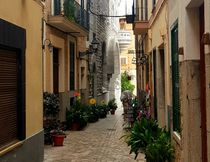 Altstadtgassen von Soller (Sóller) - Mallorca von wirmallorca