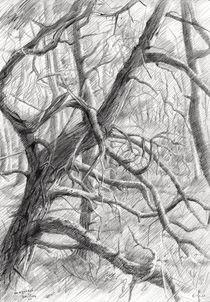 Meyendel - 20-04-14 by Corne Akkers