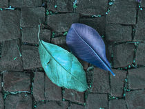 two turquoise leaves on the floor by erich-sacco