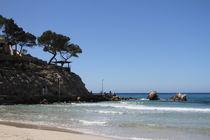 Mallorca - Peguera - Paguera von wirmallorca