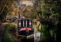 Moored Narrowboats At Newbury von Ian Lewis