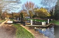 Springtime At Greenham Lock von Ian Lewis