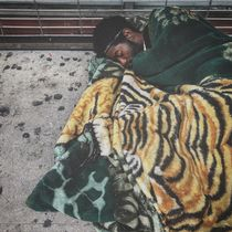 Tiger Blanket Sidewalk Sleeper by David Grave