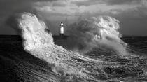 In the jaws of Hurricane Ophelia von Leighton Collins