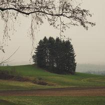 Mystisches Waldviertel von Christian Handler