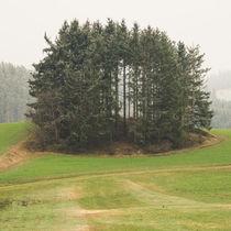 Mystisches Waldviertel 2019 von Christian Handler