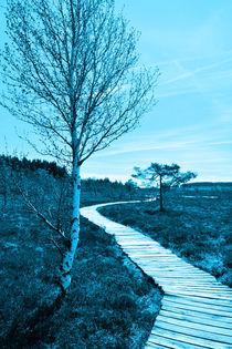 Der Weg.... von Claudia Evans