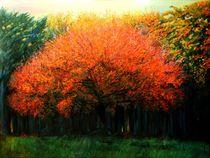 Autumn tree at Laren (2013) by Corne Akkers