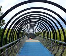 Slinky Springs Brücke 316 a von maja-310