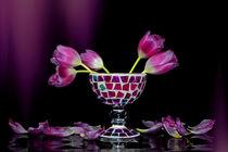 Die Farbe Rosa von Claudia Evans