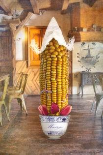 Maisje von garrulus-glandarius