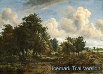 Jacob van Ruisdael, Landscape by artokoloro