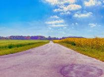Feldweg von Zarahzeta ®