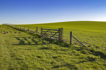 Fence in the countryside von Steve Mantell