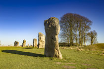 Prehistoric stone circles by Steve Mantell