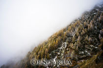 obscyria 7 by Frank Kiesel