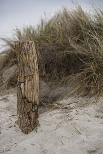 Fehmarn Strand von Stephan Zaun