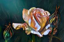 The Rose. Minas' Trove. von Artly Studio