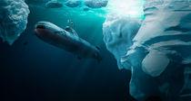 U-Boot taucht unter dem Eis von Sven Bachström