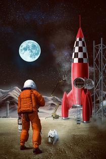 Mission zum Mond von Sven Bachström