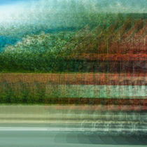 In Motion by Andrea Friederichs-du Maire