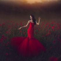Poppy field fire by Marina Zharinova