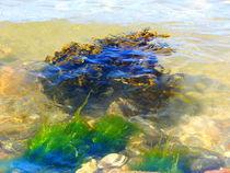 Unterwasser by Zarahzeta ®