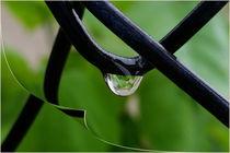 Drop of rain von feiermar