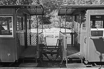 Welshpool & Llanfair Light Railway.  Two Carriages. by Lachlan Main