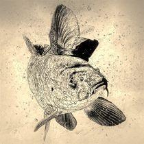 Digital Art Karpfen by kattobello
