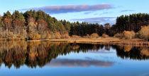 Loch Kildary-Scotland by Dave Harnetty