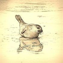 Digital Art Junge Robbe von kattobello