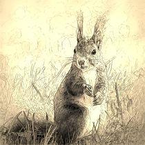 Digital Art Eichhörnchen by kattobello